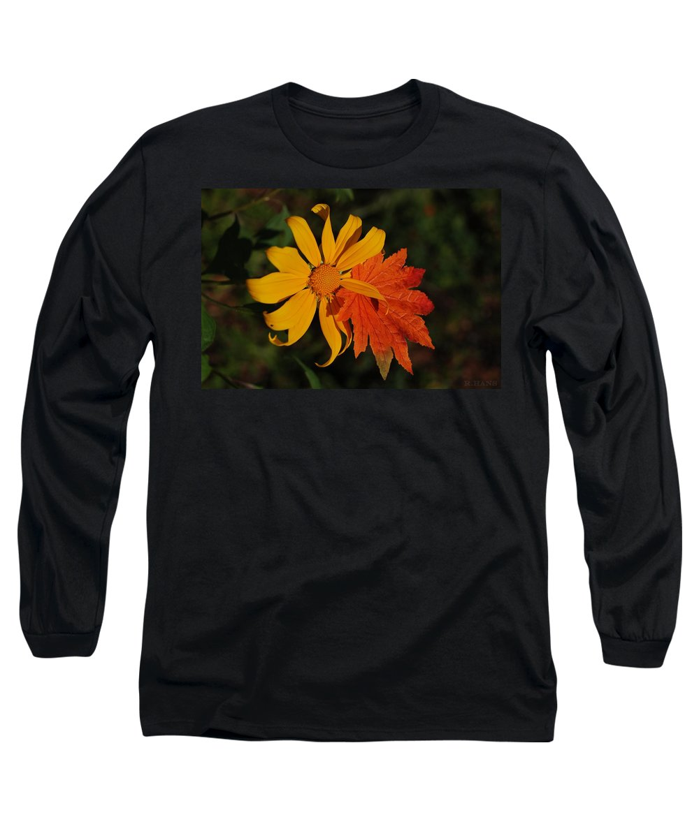 Pop Art Long Sleeve T-Shirt featuring the photograph Sun Flower And Leaf by Rob Hans