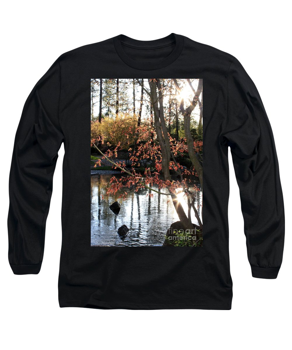 Maple Tree Long Sleeve T-Shirt featuring the photograph Sunlight Through Japanese Maple by Carol Groenen
