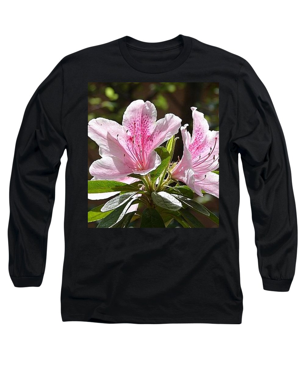 Lily Pinkgreen Pedals Leaves Long Sleeve T-Shirt featuring the photograph Sunshine by Luciana Seymour