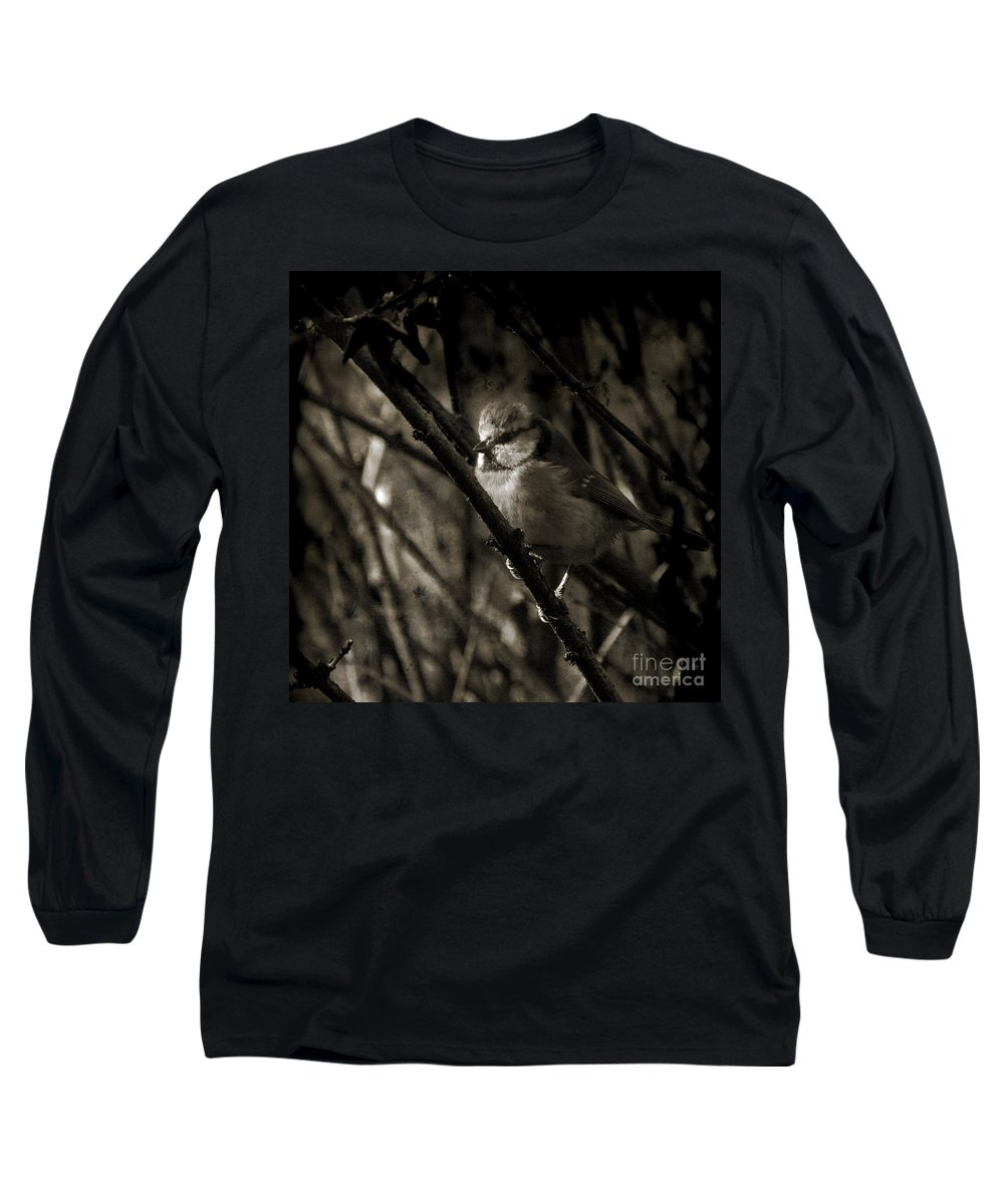 Blue Tit Long Sleeve T-Shirt featuring the photograph The Cold Morning by Angel Ciesniarska