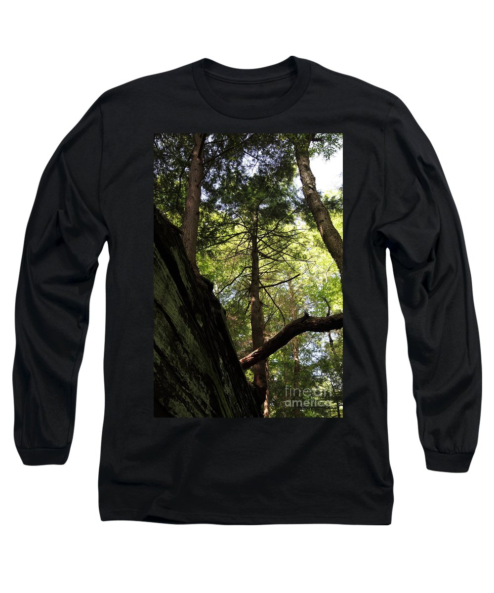 Tree Long Sleeve T-Shirt featuring the photograph The Fallen Triangle by Amanda Barcon