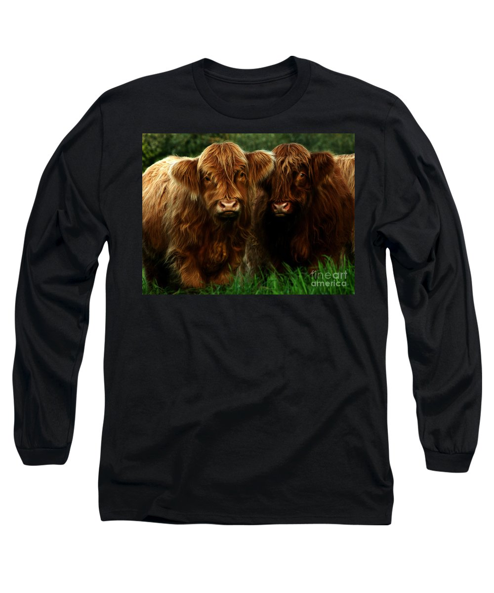 Heilan Coo Long Sleeve T-Shirt featuring the photograph The Fluffy Cows by Angel Tarantella