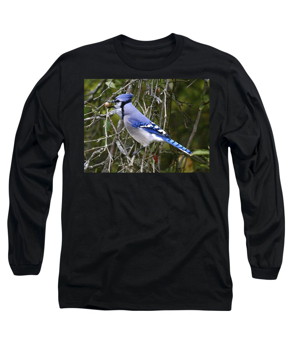 Bird Long Sleeve T-Shirt featuring the photograph The Gathering by Robert Pearson