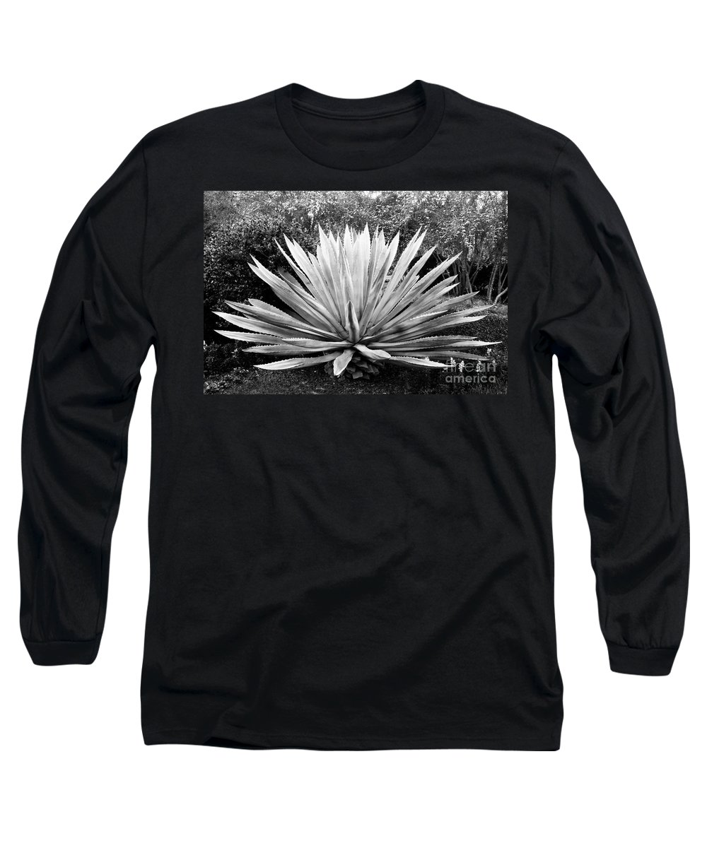 Agave Long Sleeve T-Shirt featuring the photograph The Great Agave by David Lee Thompson