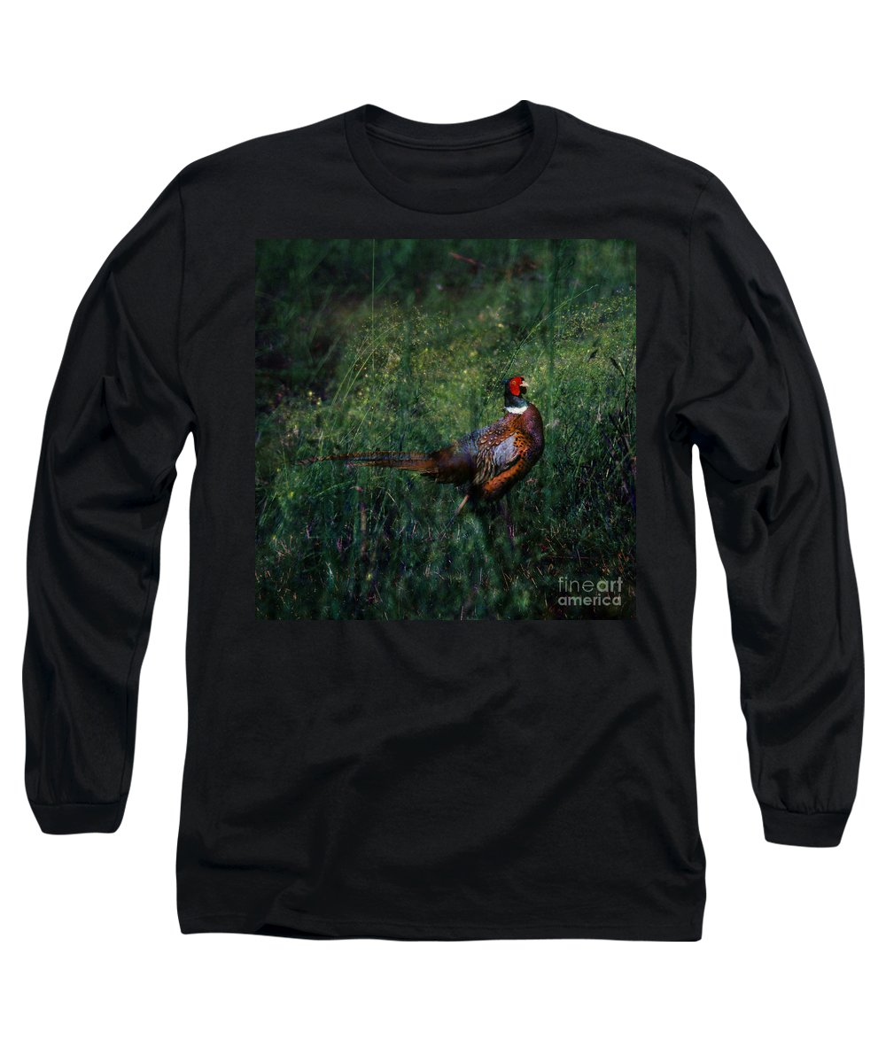 Pheasant Long Sleeve T-Shirt featuring the photograph The Pheasant In The Autumn Colors by Angel Tarantella