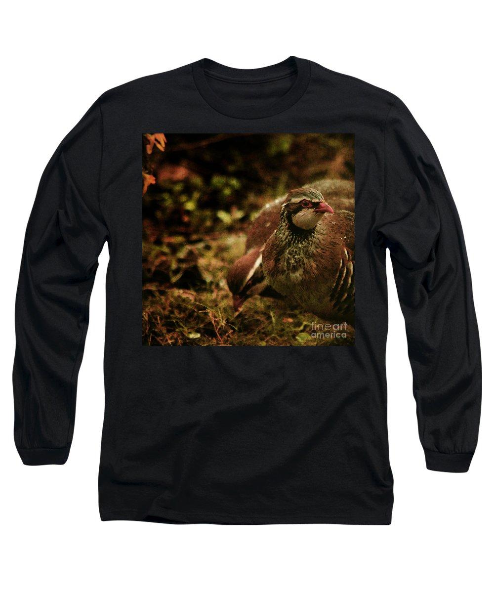 Partridge Long Sleeve T-Shirt featuring the photograph The Redlegged Partridges by Angel Tarantella
