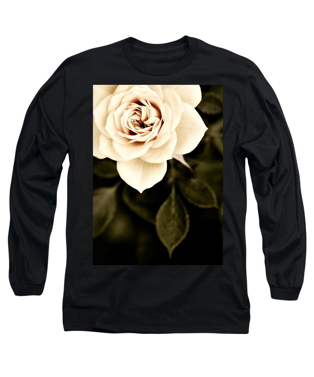 Rose Long Sleeve T-Shirt featuring the photograph The Softest Rose by Marilyn Hunt