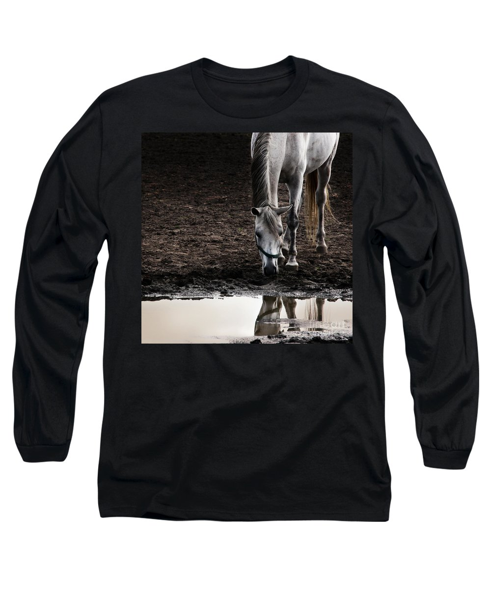 Horse Long Sleeve T-Shirt featuring the photograph The Water Reflection by Angel Ciesniarska
