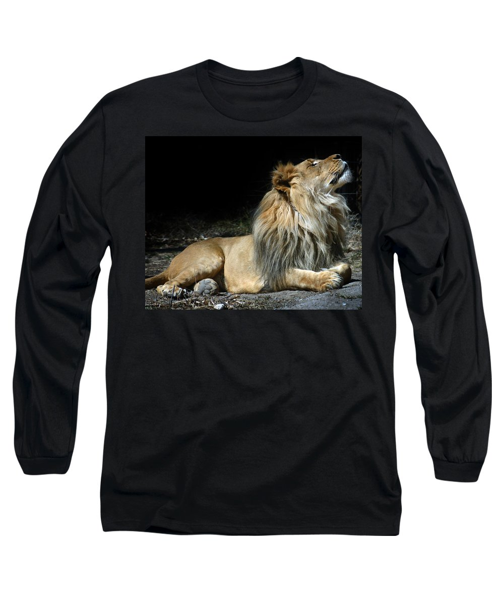 Lion Long Sleeve T-Shirt featuring the photograph This Is My Best Side by Anthony Jones