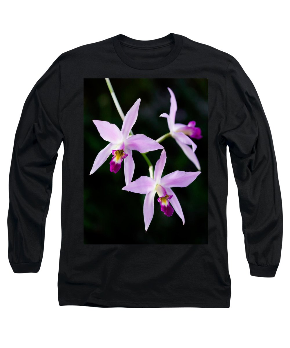 Orchid Long Sleeve T-Shirt featuring the photograph Three Orchids by Marilyn Hunt