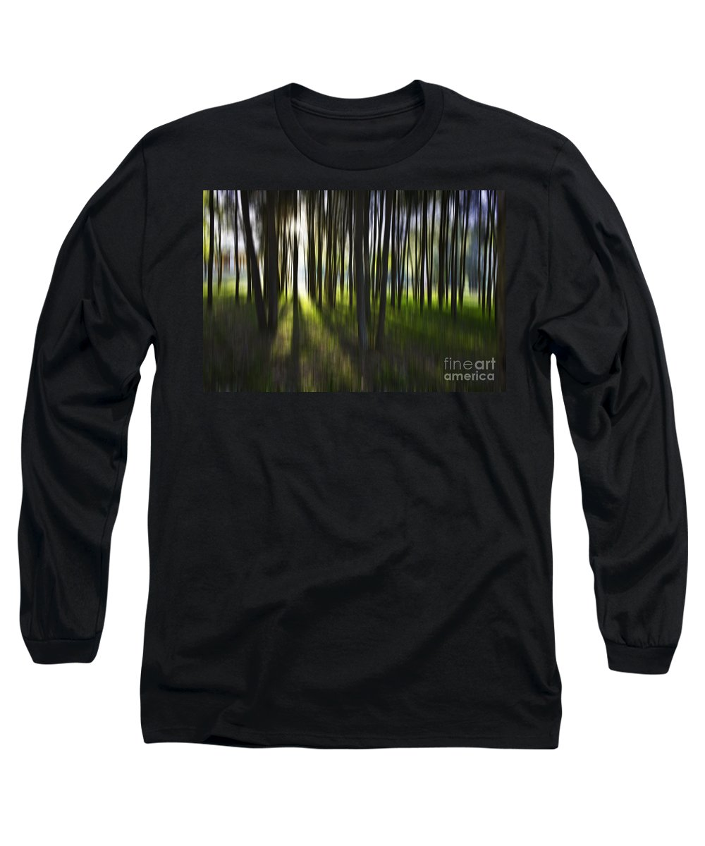 Trees Abstract Tree Lines Forest Wood Long Sleeve T-Shirt featuring the photograph Tree Abstract by Avalon Fine Art Photography