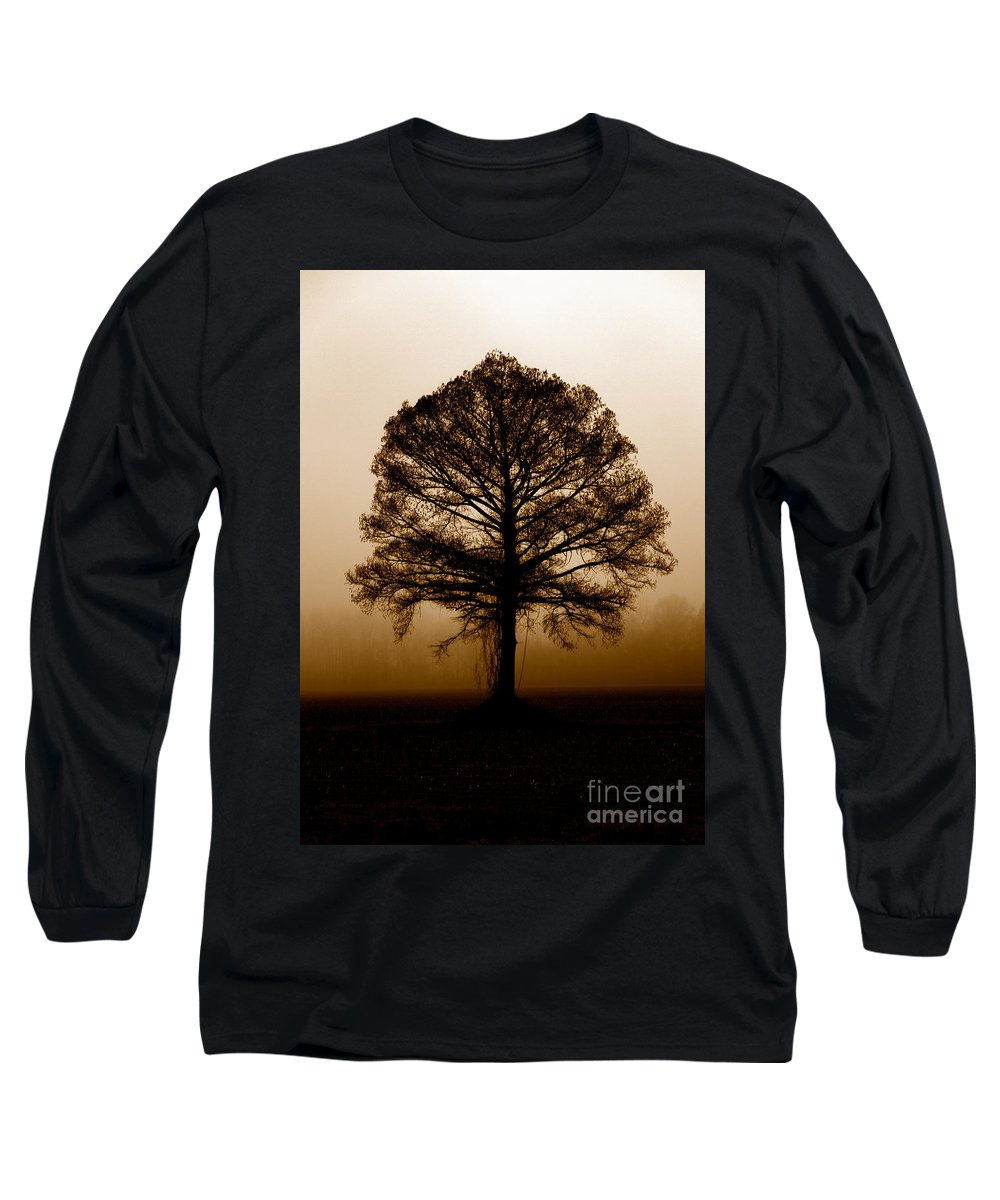 Trees Long Sleeve T-Shirt featuring the photograph Tree by Amanda Barcon