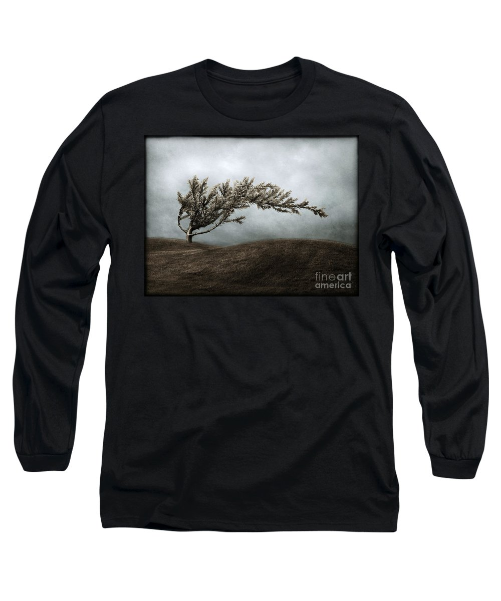 Bend Long Sleeve T-Shirt featuring the photograph We Break And We Bend And We Turn Ourselves Inside Out by Dana DiPasquale