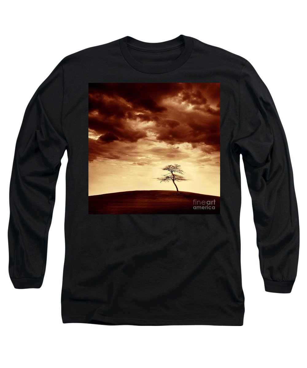 Tree Long Sleeve T-Shirt featuring the photograph What Will Be The Legacy by Dana DiPasquale