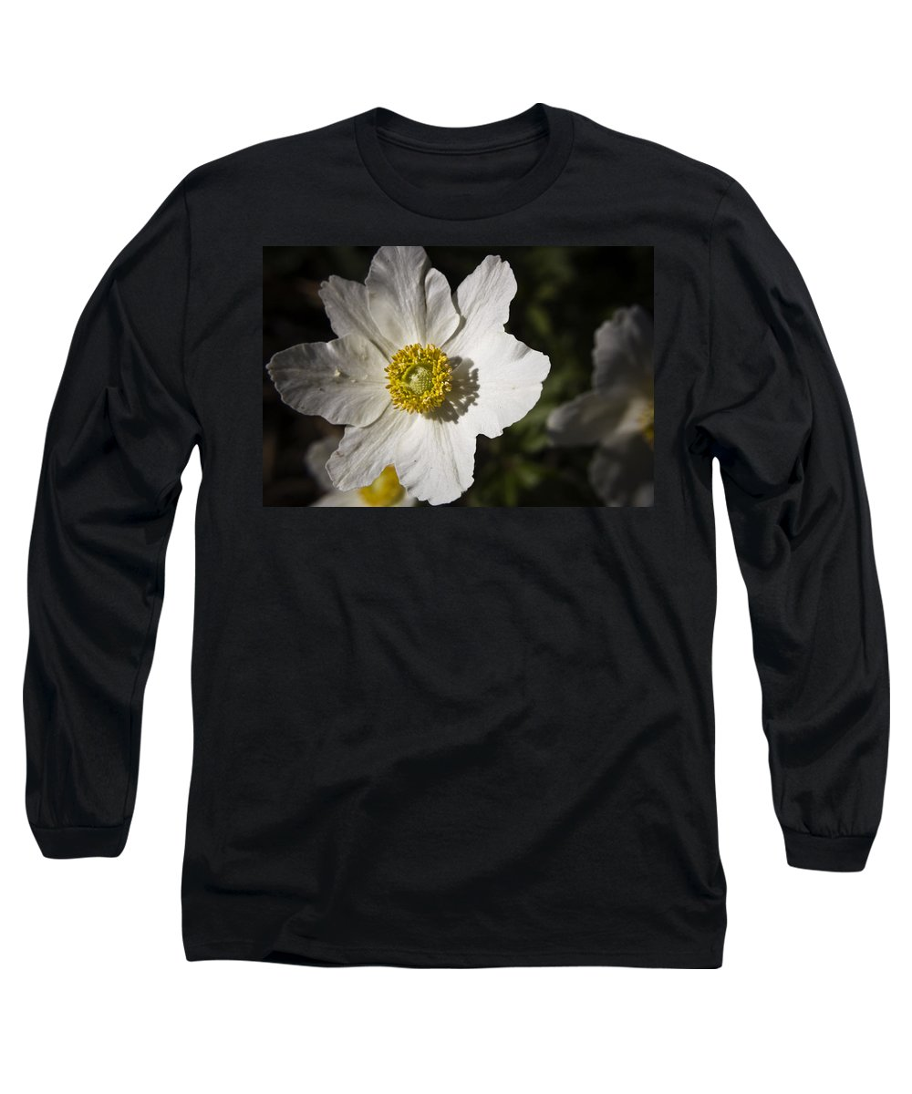 Flower Long Sleeve T-Shirt featuring the photograph White Anemone by Teresa Mucha