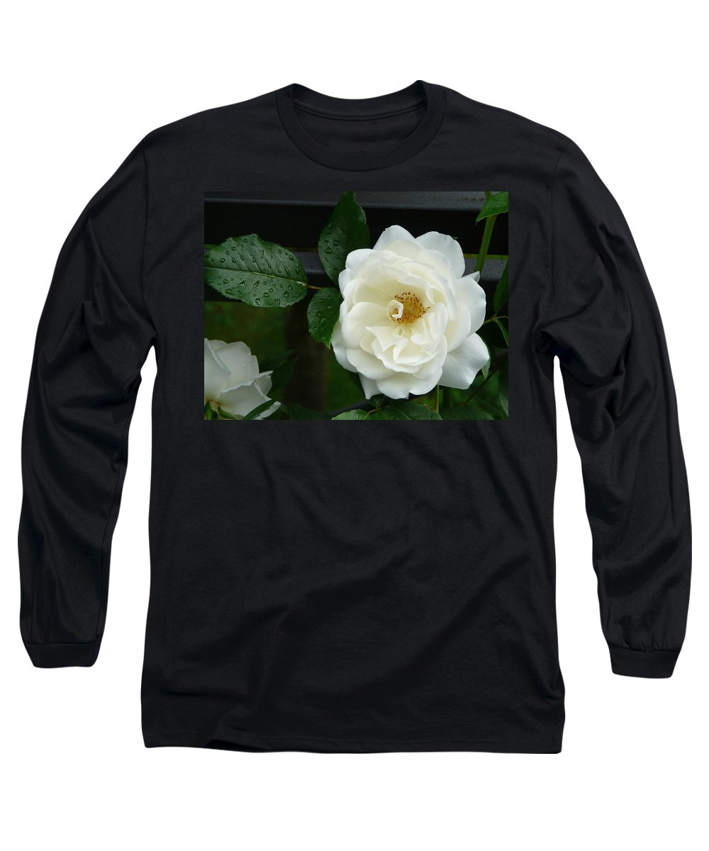 Rose Long Sleeve T-Shirt featuring the photograph White Rose by Valerie Ornstein