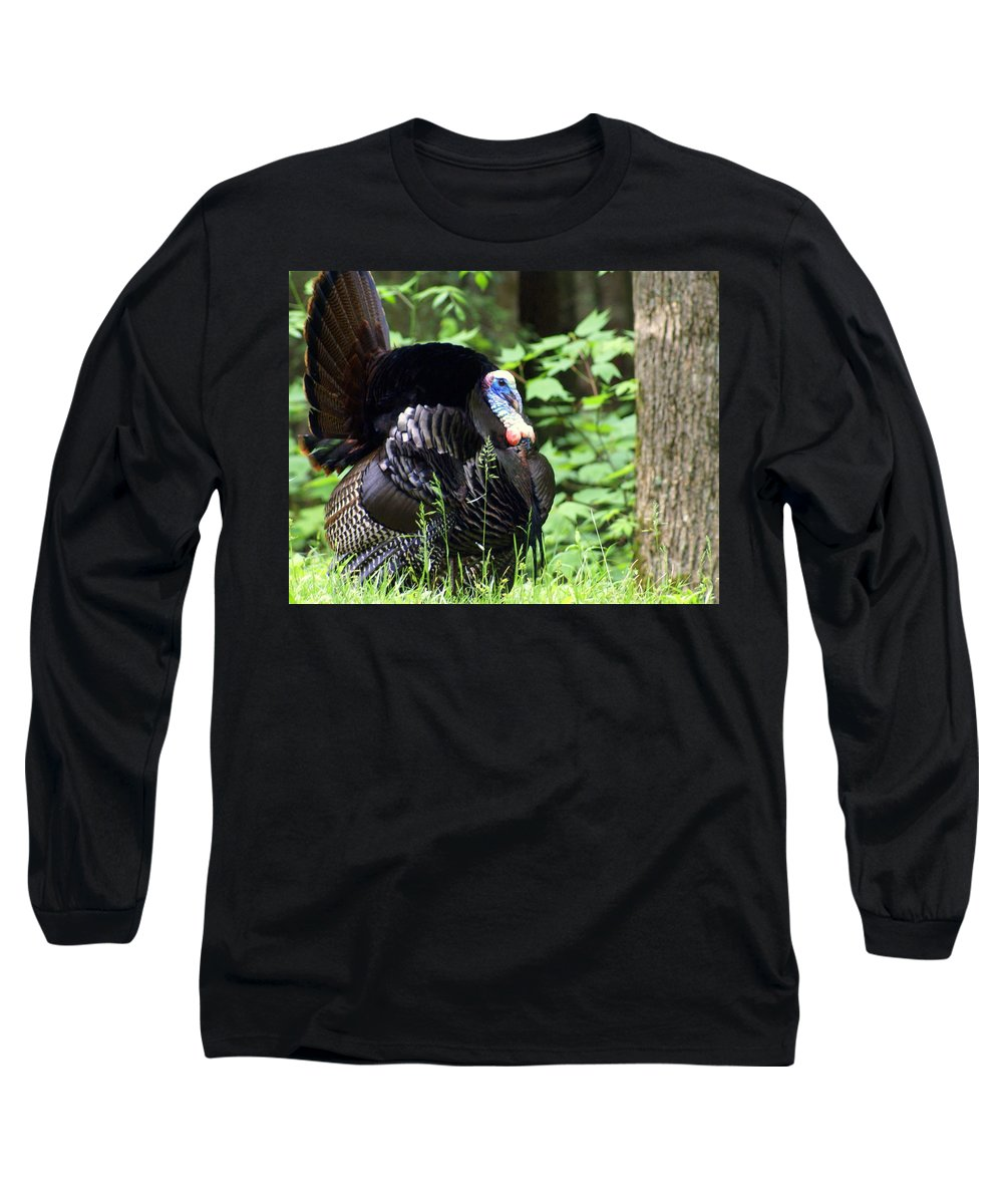 Wild Turkey Long Sleeve T-Shirt featuring the photograph Wild Turkey 2 by Marty Koch