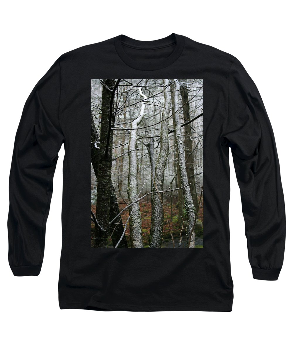 Tree Woods Forest Wood Snow White Green Winter Season Nature Cold Long Sleeve T-Shirt featuring the photograph Wintery Day by Andrei Shliakhau