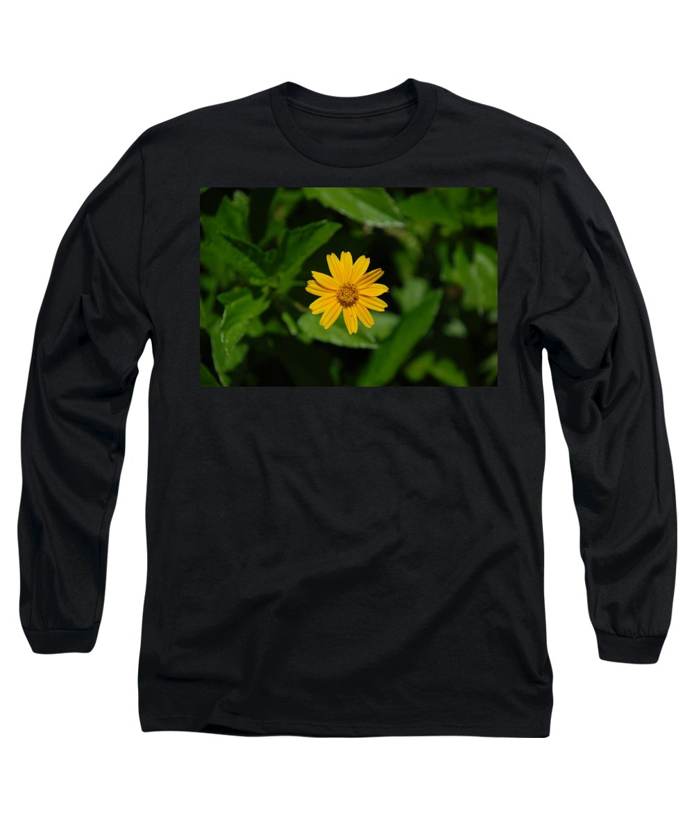 Macro Long Sleeve T-Shirt featuring the photograph Yellow by Rob Hans