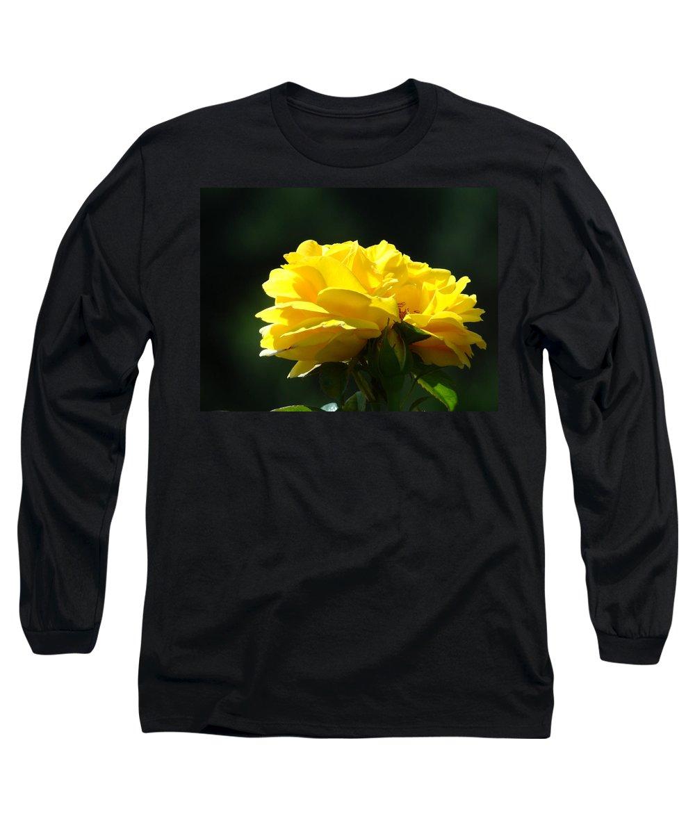 Rose Long Sleeve T-Shirt featuring the photograph Yellow Rose Sunlit Rose Garden Landscape Art Baslee Troutman by Baslee Troutman