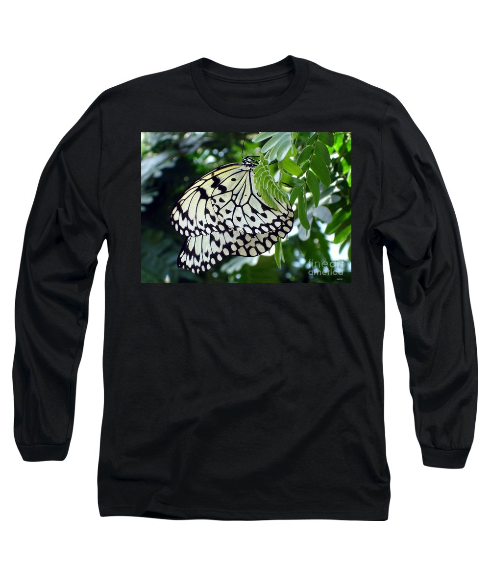 Butterfly Long Sleeve T-Shirt featuring the photograph Zebra In Disguise by Shelley Jones