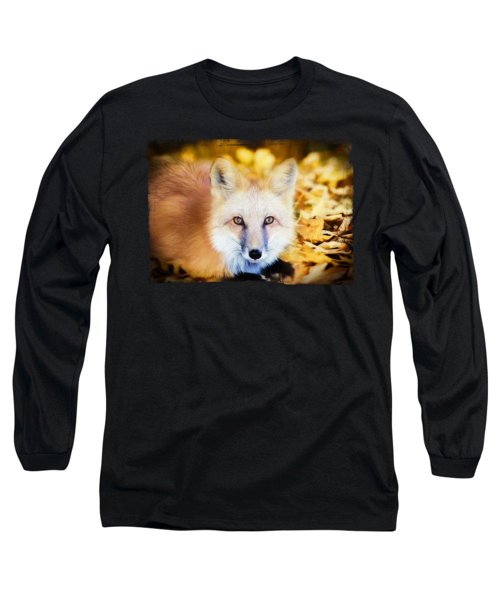 Woodland Long Sleeve T-Shirts