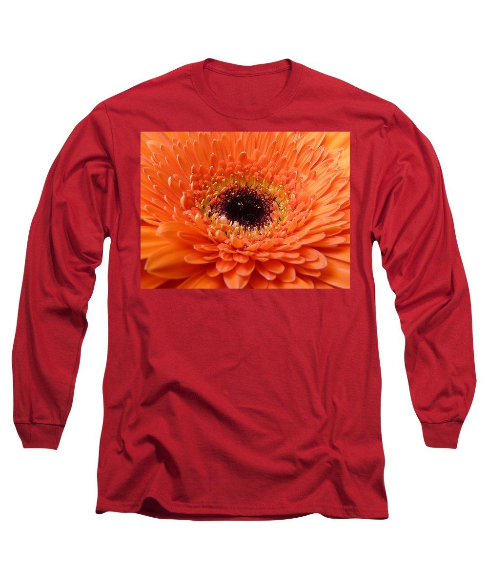 Gerbera Long Sleeve T-Shirt featuring the photograph Gerbera by Daniel Csoka