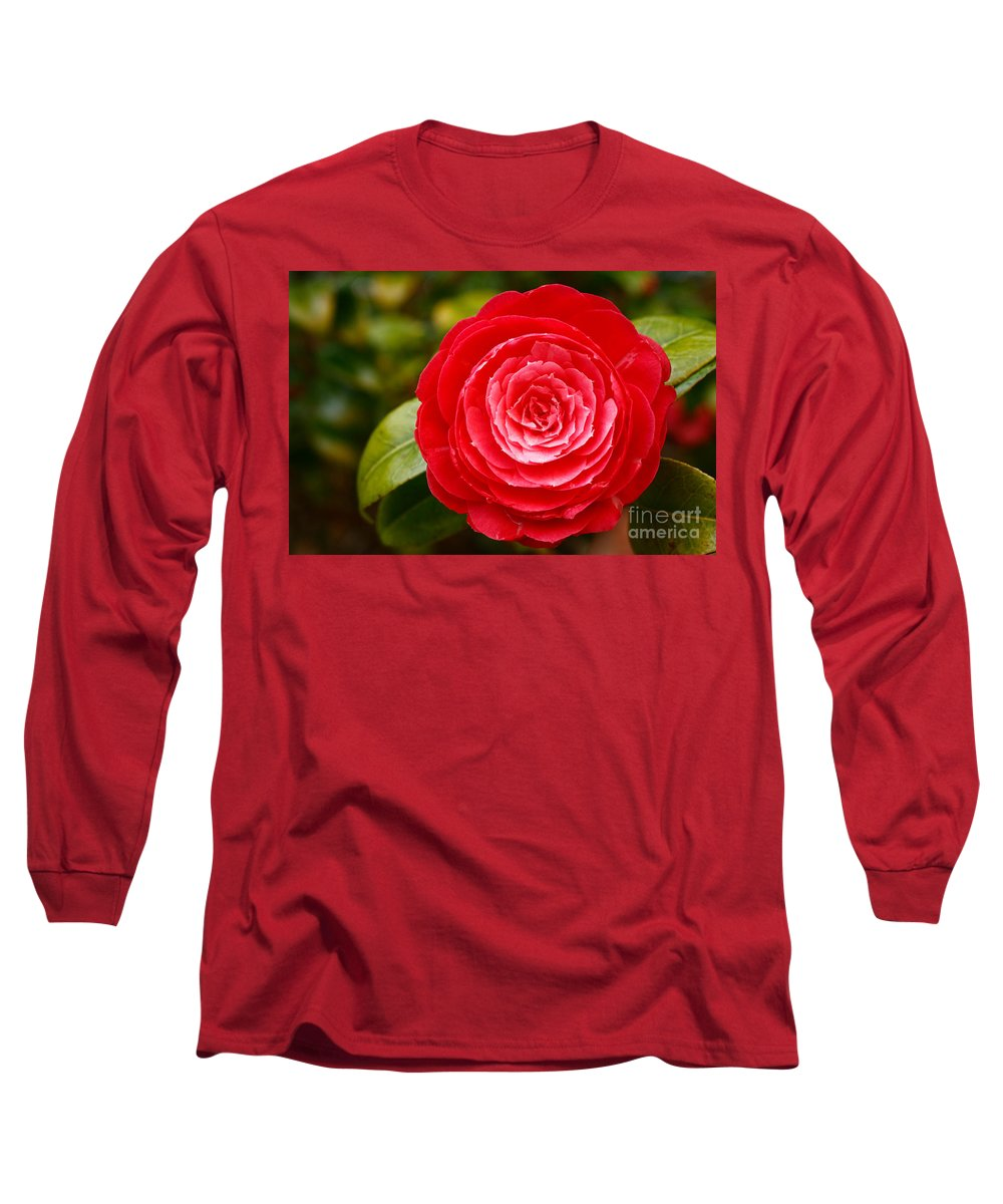Azores Long Sleeve T-Shirt featuring the photograph Camellia Japonica by Gaspar Avila