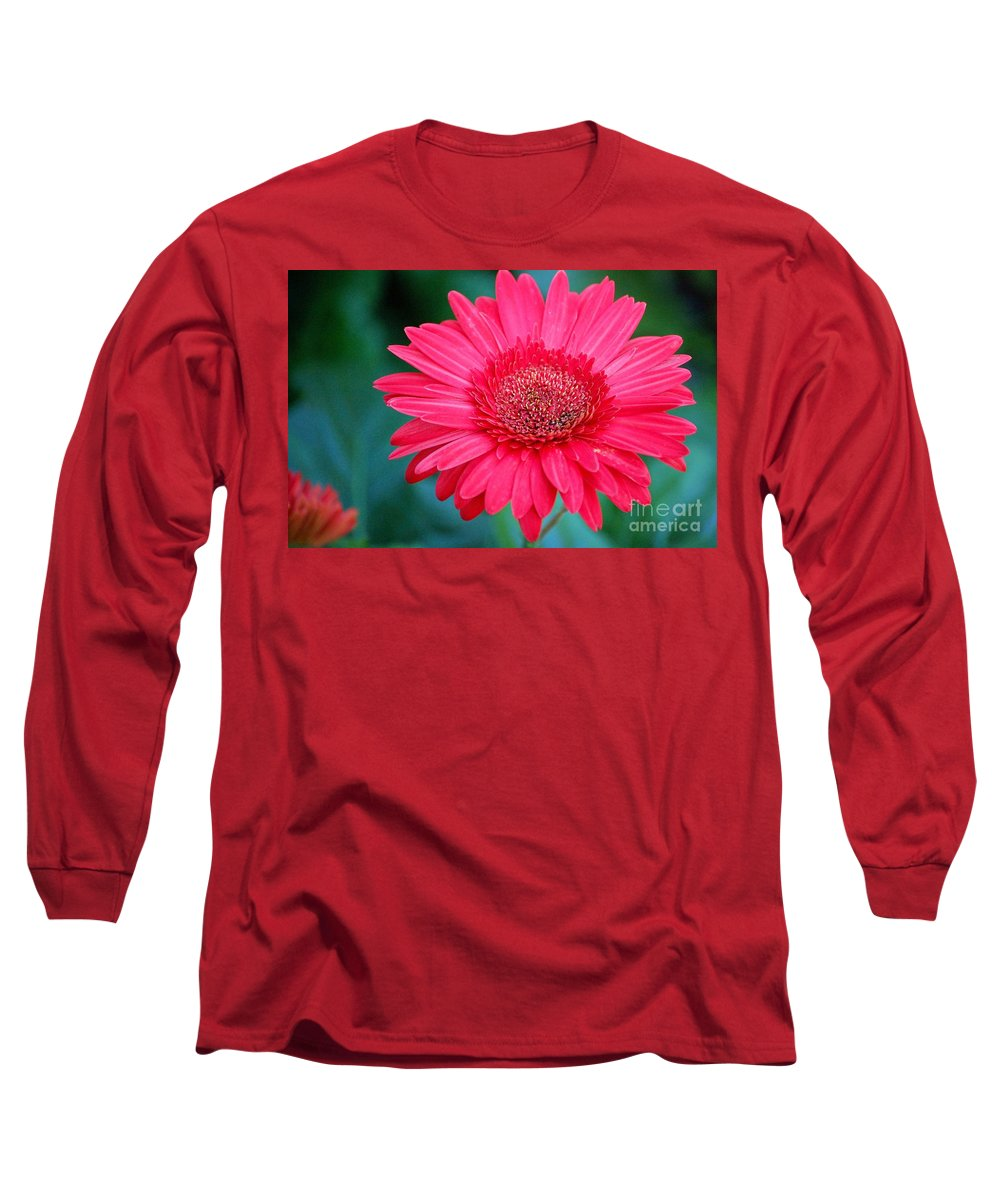 Gerber Daisy Long Sleeve T-Shirt featuring the photograph In The Pink by Debbi Granruth