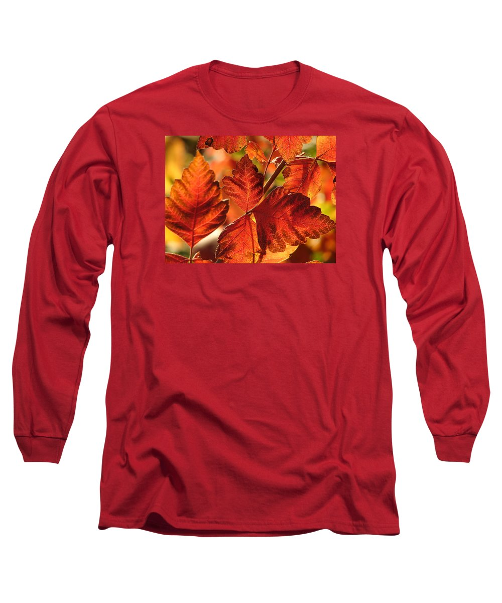 Photograph Long Sleeve T-Shirt featuring the photograph Jack Painted My Yard by J R Seymour
