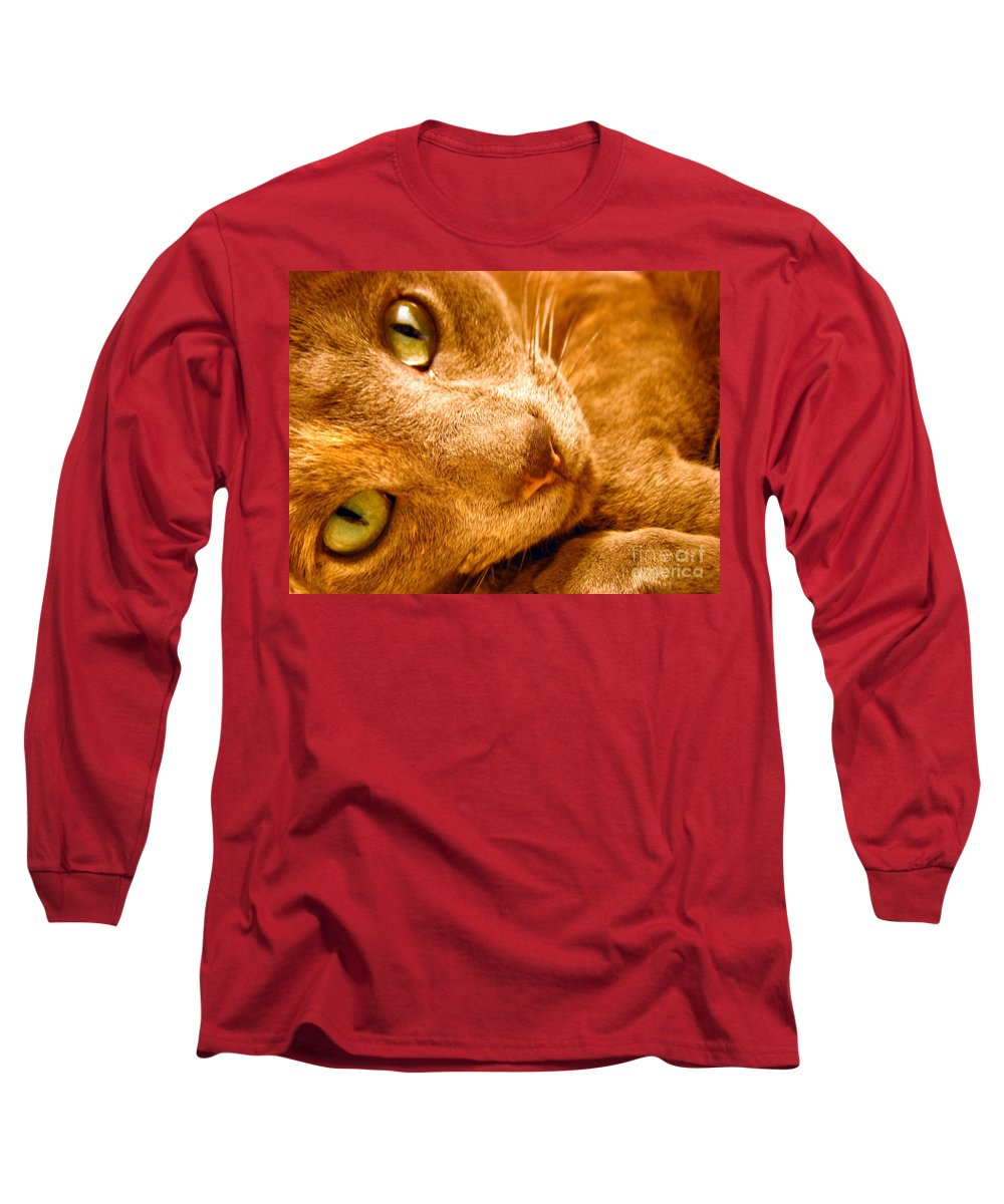 Cats Long Sleeve T-Shirt featuring the photograph Kitty by Amanda Barcon