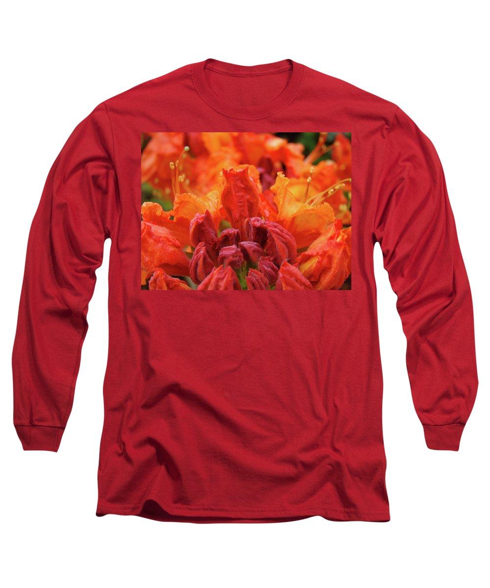 �azaleas Artwork� Long Sleeve T-Shirt featuring the photograph Office Art Prints Orange Azaleas Flowers 9 Giclee Prints Baslee Troutman by Baslee Troutman