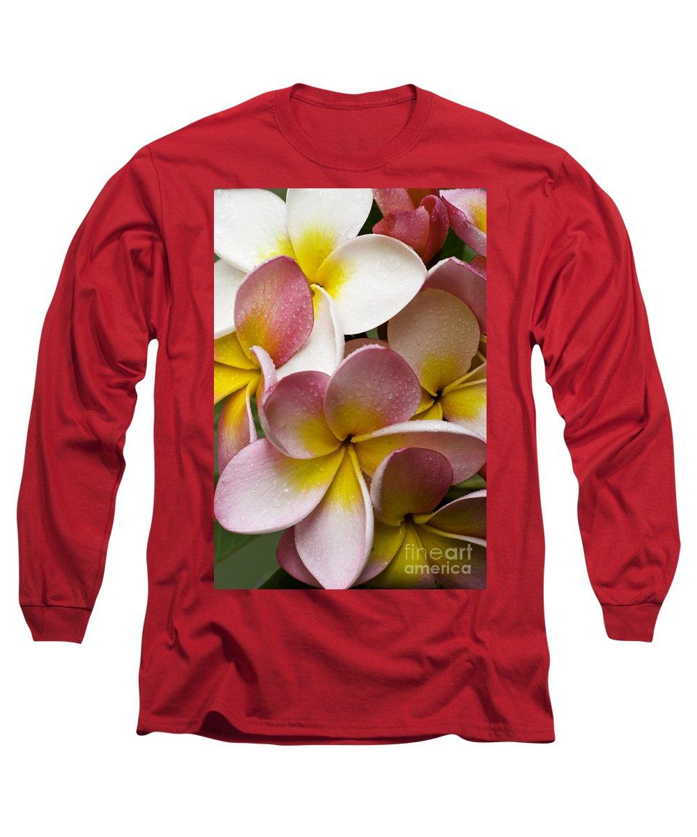 Pink Frangipani Long Sleeve T-Shirt featuring the photograph Pink Frangipani by Avalon Fine Art Photography