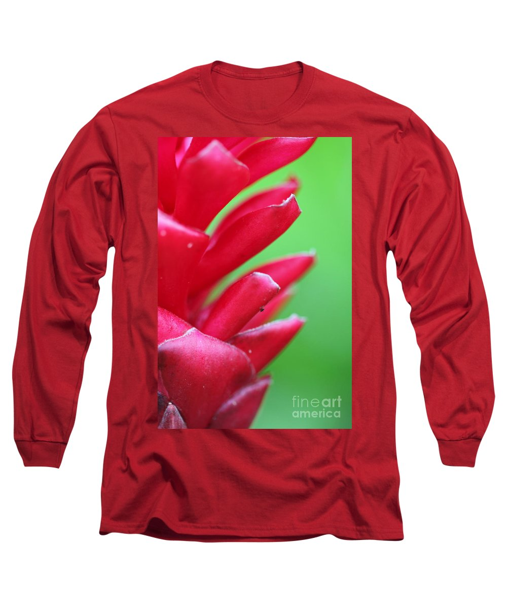 Ginger Long Sleeve T-Shirt featuring the photograph Pink Ginger by Nadine Rippelmeyer