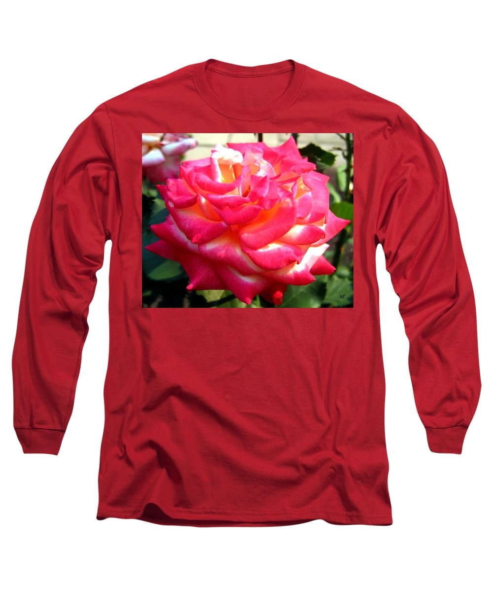 Rose Long Sleeve T-Shirt featuring the photograph Pink Perfection by Will Borden