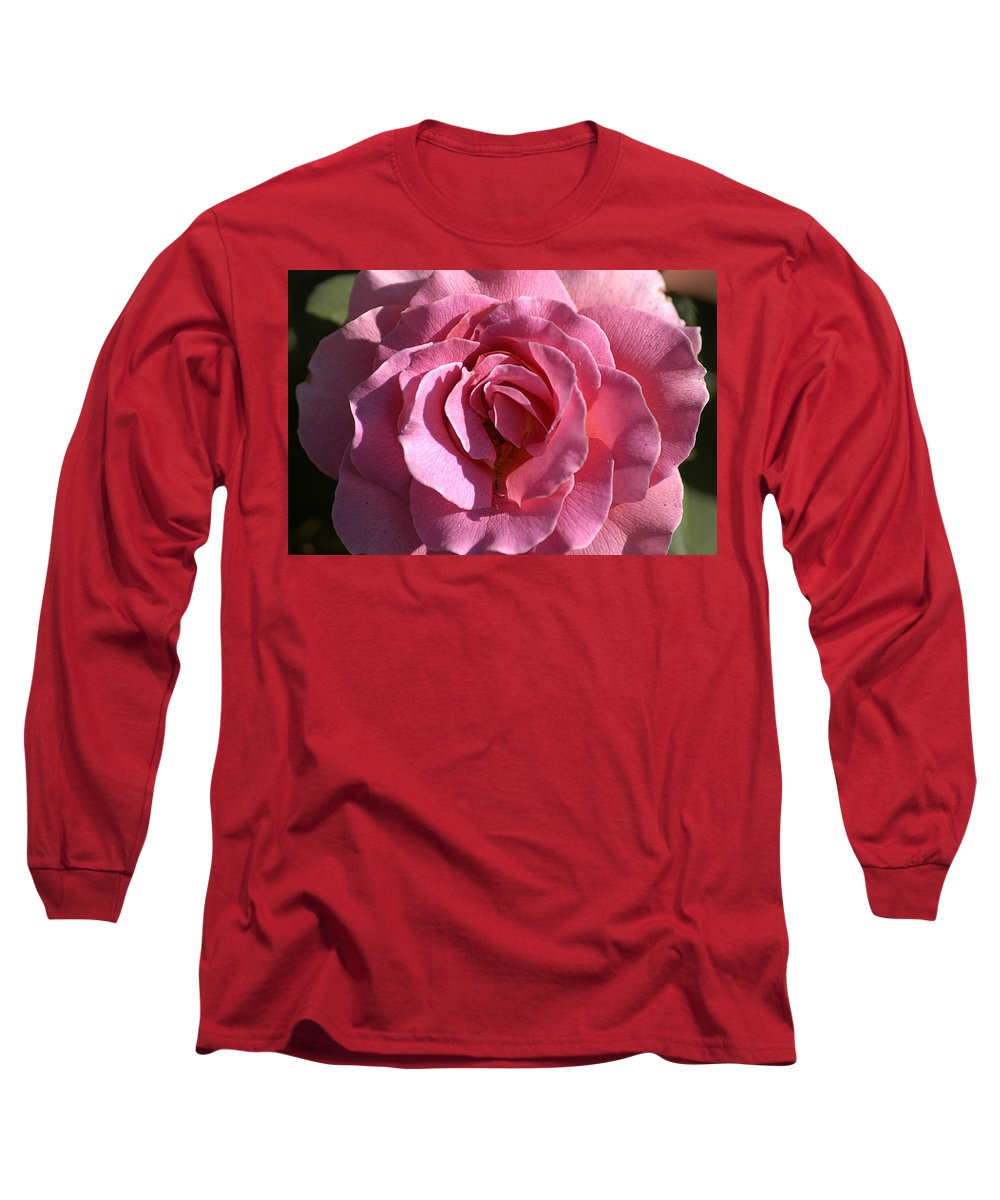 Clay Long Sleeve T-Shirt featuring the photograph Pink Rose by Clayton Bruster