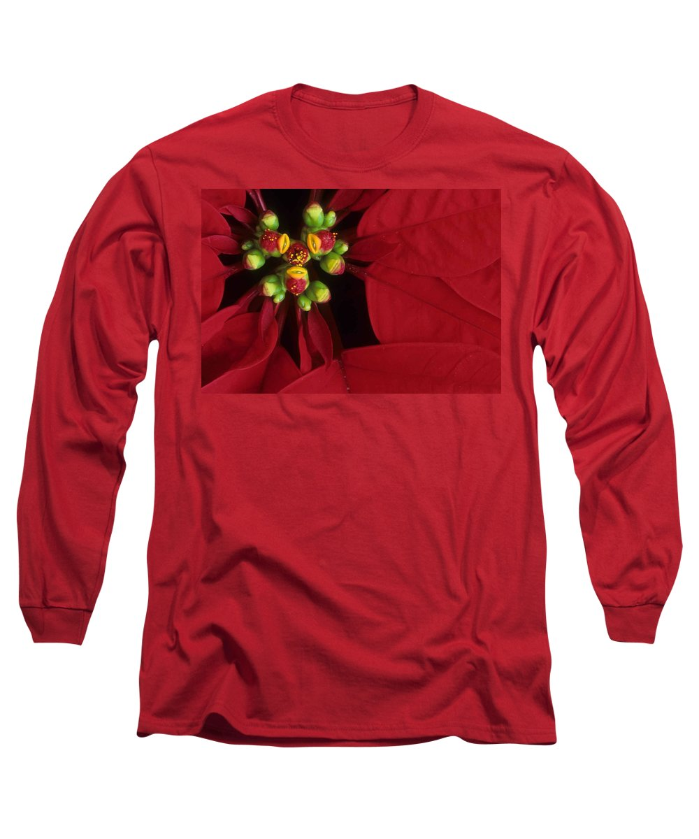 Poinsettia Long Sleeve T-Shirt featuring the photograph Poinsettia by Laurie Paci