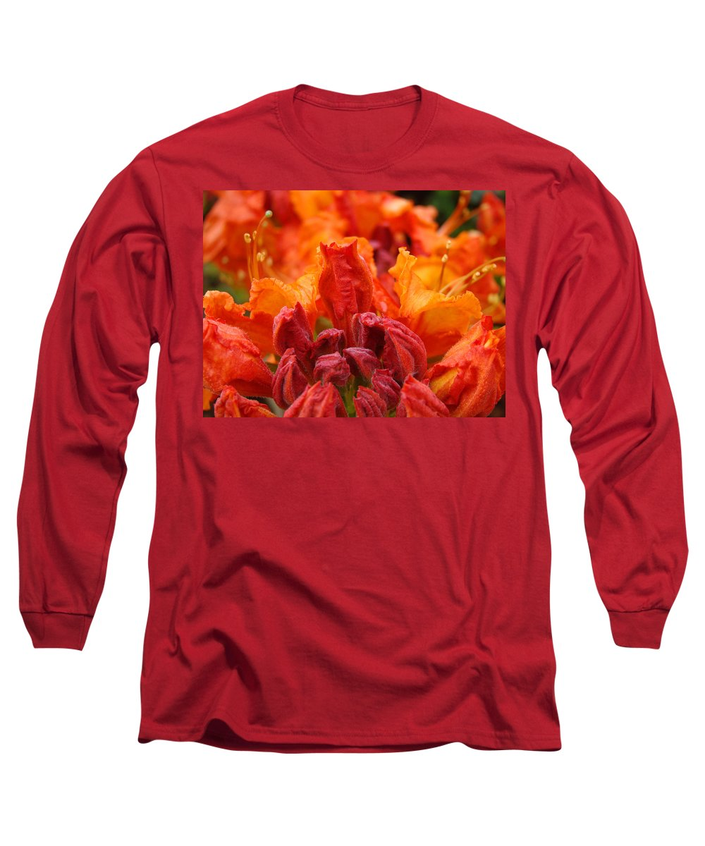 �azaleas Artwork� Long Sleeve T-Shirt featuring the photograph Red Azaleas Orange Azalea Flowers 9 Floral Giclee Art Prints Baslee Troutman by Baslee Troutman
