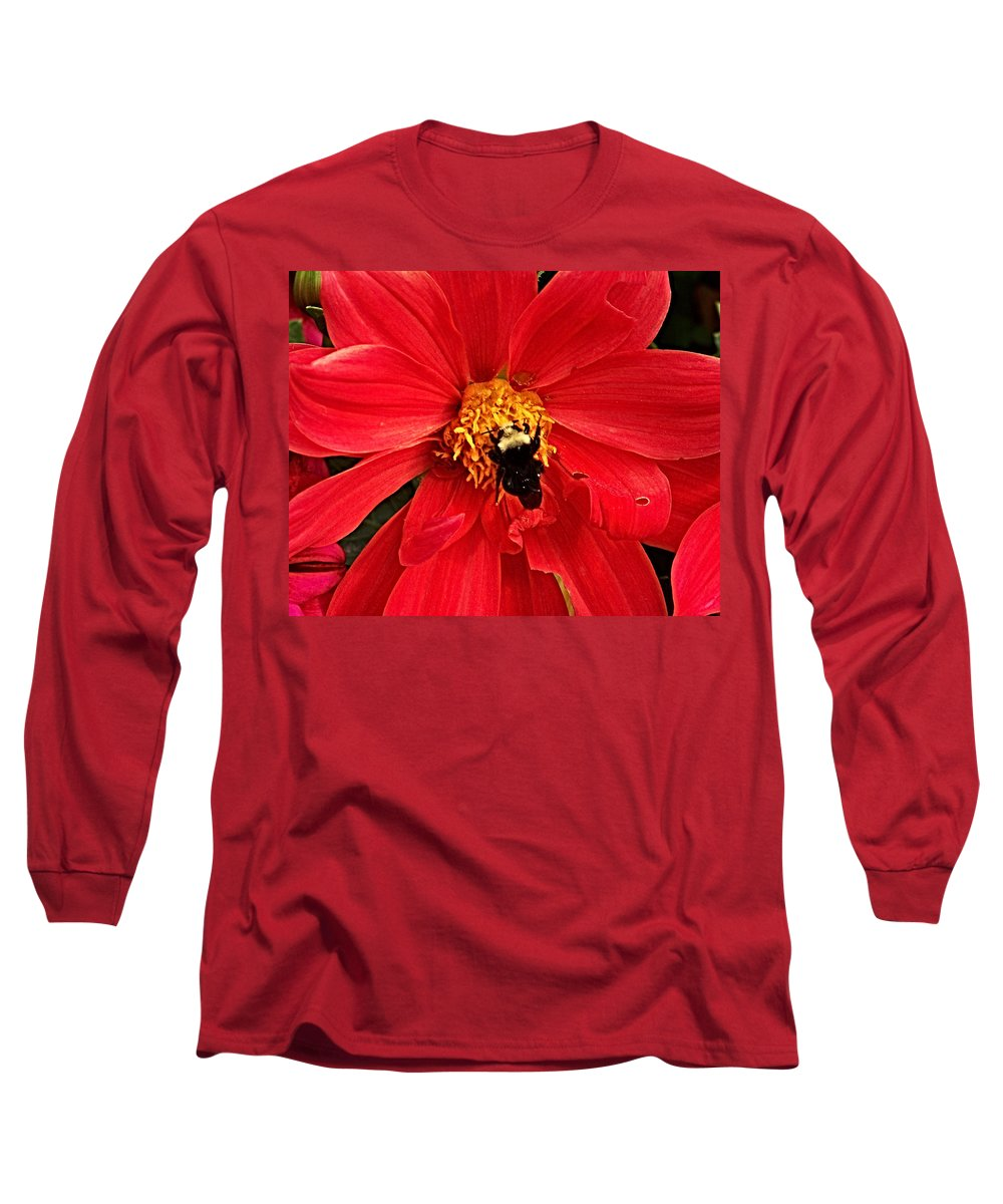 Flower Long Sleeve T-Shirt featuring the photograph Red Flower And Bee by Anthony Jones