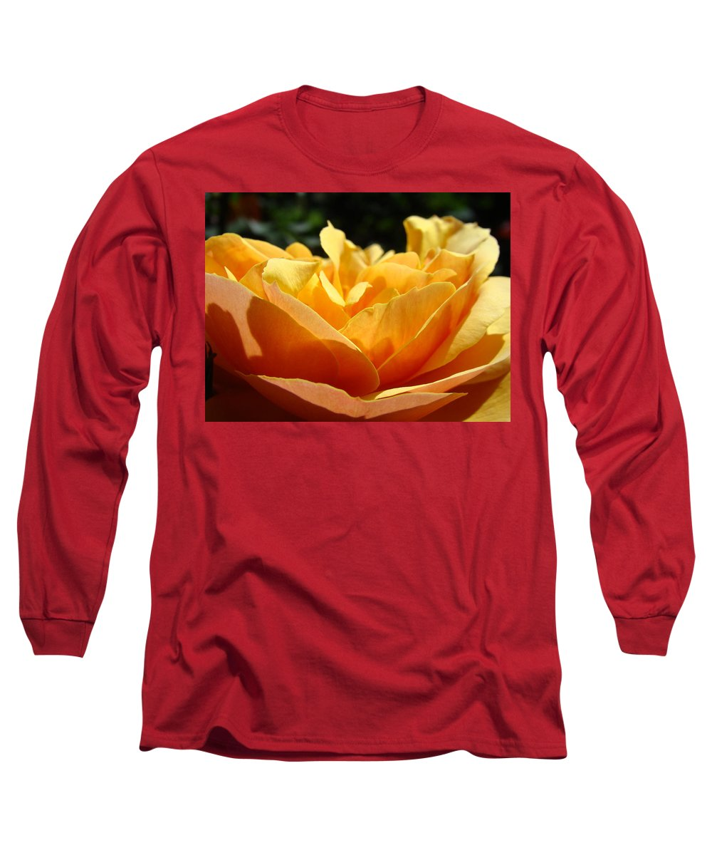 Rose Long Sleeve T-Shirt featuring the photograph Rose Sunlit Orange Rose Garden 7 Rose Giclee Art Prints Baslee Troutman by Baslee Troutman