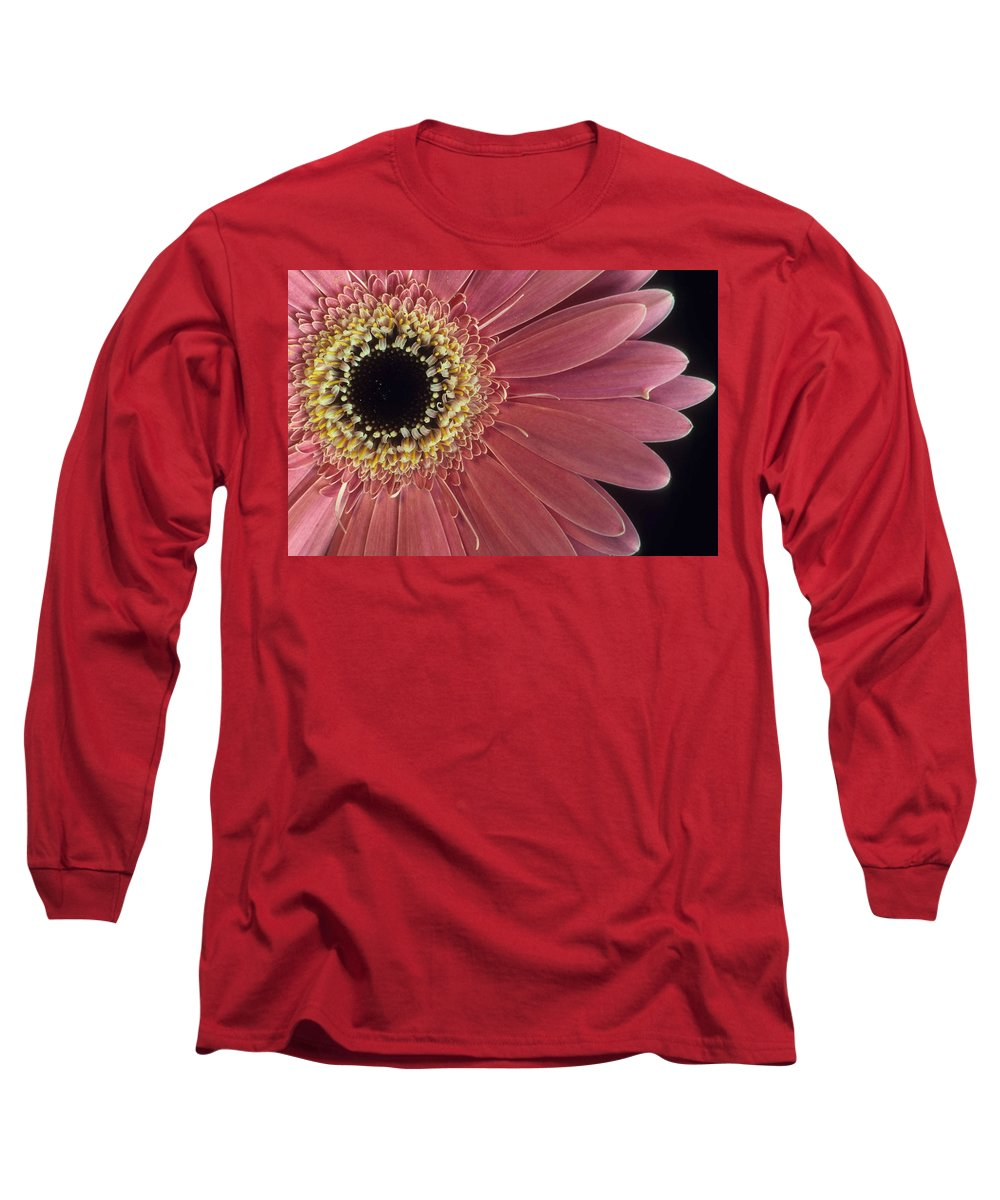 Salmon Gerber Daisy Long Sleeve T-Shirt featuring the photograph Salmon Gerber Daisy by Laurie Paci