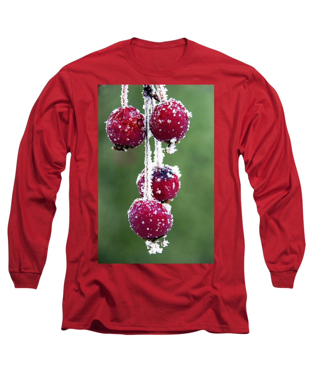 Berries Long Sleeve T-Shirt featuring the photograph Seasonal Colors by Marilyn Hunt