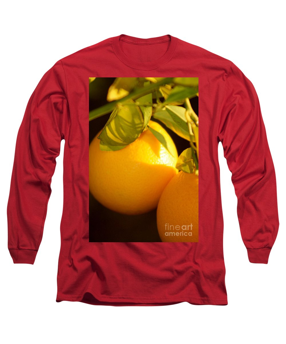 Fruit Long Sleeve T-Shirt featuring the photograph Winter Fruit by Nadine Rippelmeyer