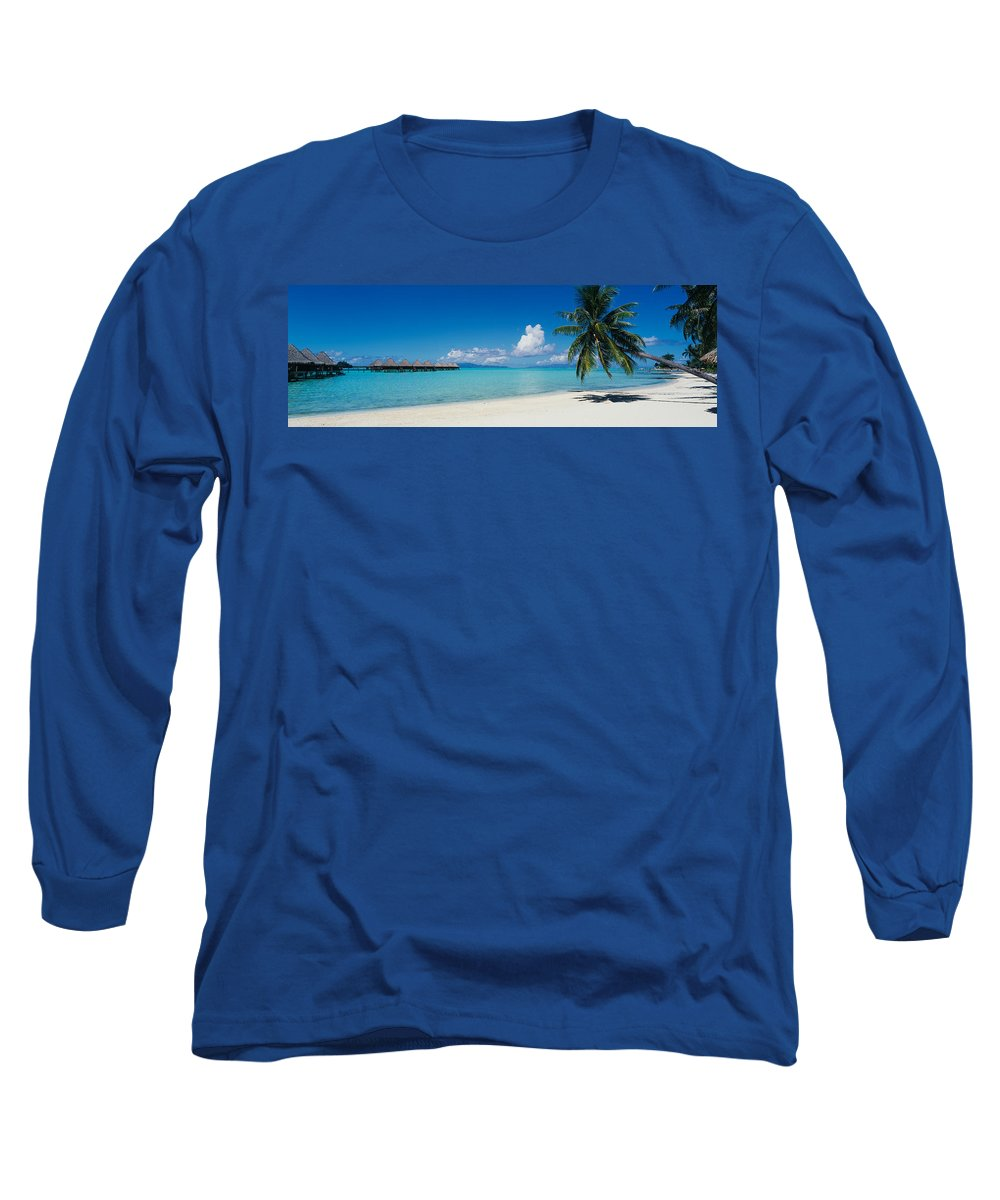 Photography Long Sleeve T-Shirt featuring the photograph Palm Tree On The Beach, Moana Beach by Panoramic Images