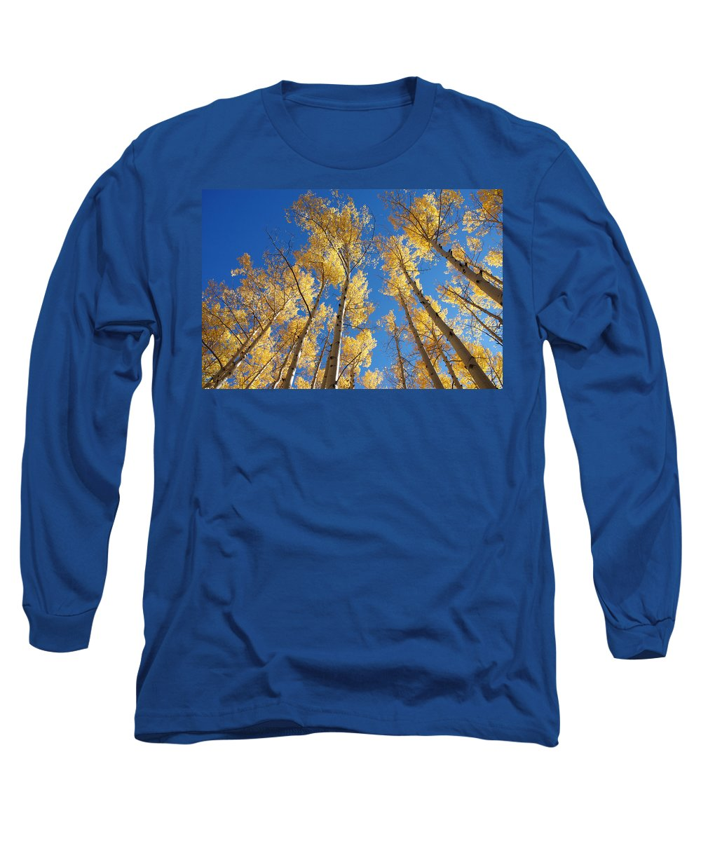 Aspen Long Sleeve T-Shirt featuring the photograph Colorado Aspen by Jerry McElroy
