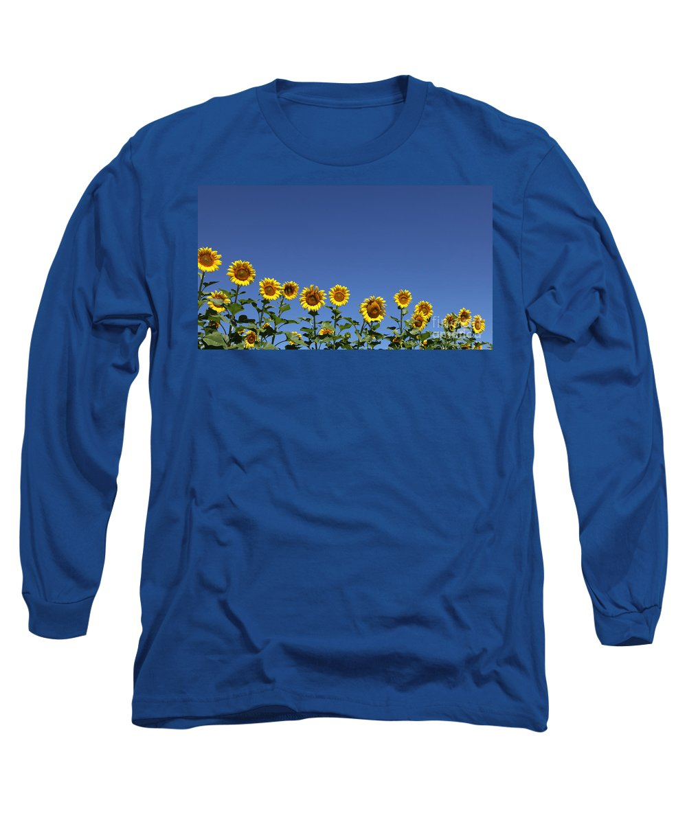 Sunflowers Long Sleeve T-Shirt featuring the photograph Family Time by Amanda Barcon