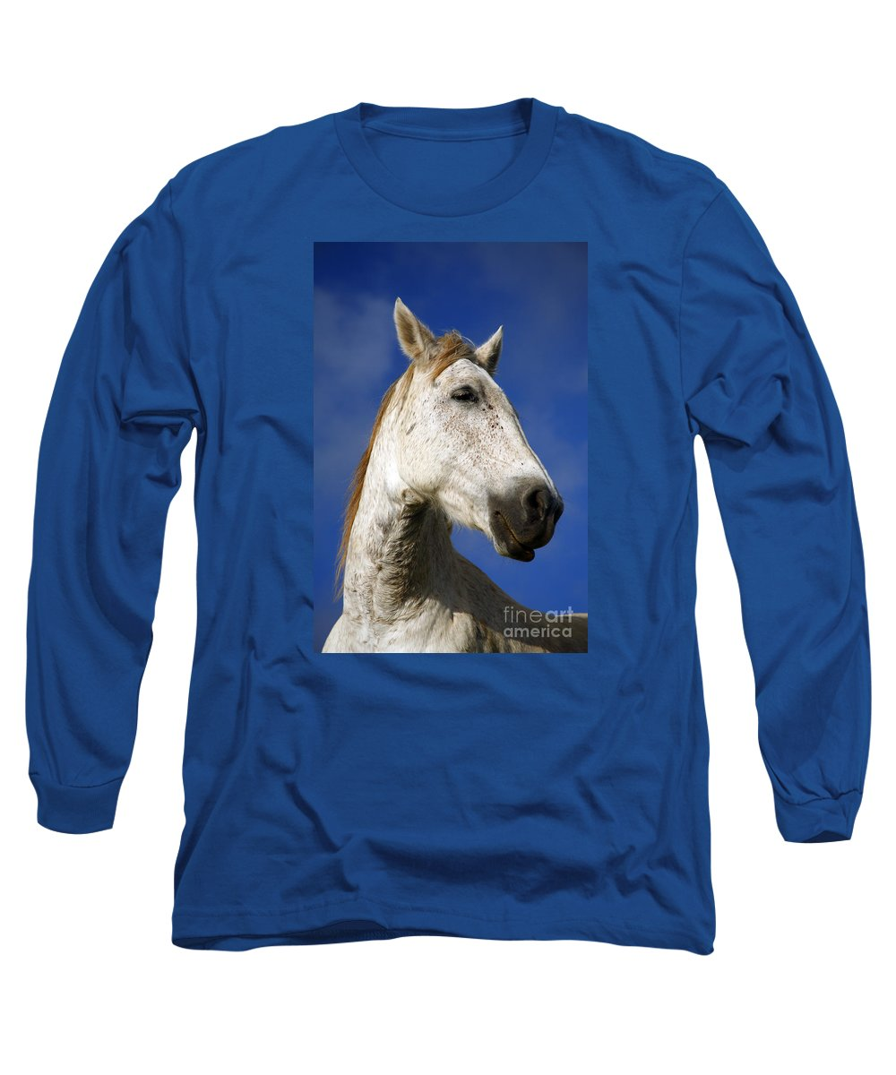 Animals Long Sleeve T-Shirt featuring the photograph Horse Portrait by Gaspar Avila