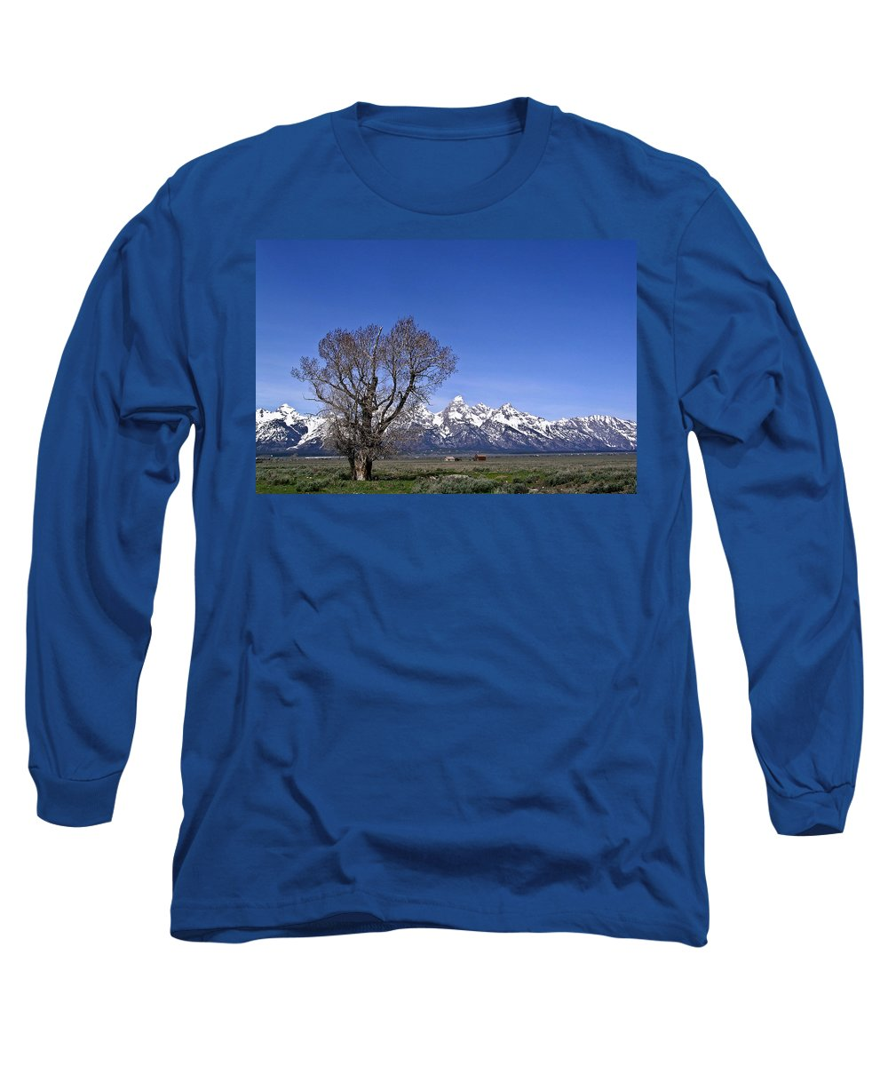 Tree Long Sleeve T-Shirt featuring the photograph Lone Tree At Tetons by Douglas Barnett