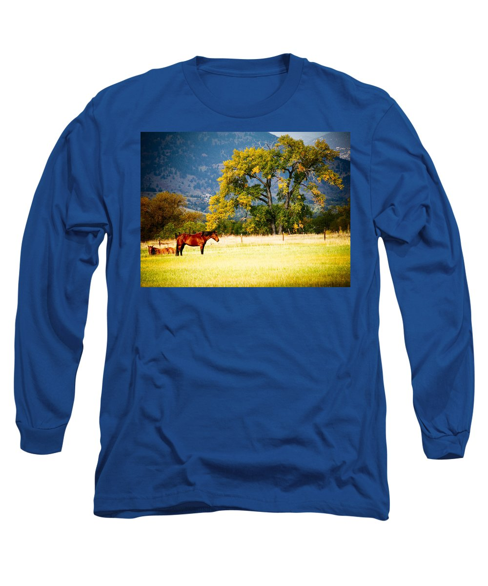Animal Long Sleeve T-Shirt featuring the photograph Two Horses by Marilyn Hunt