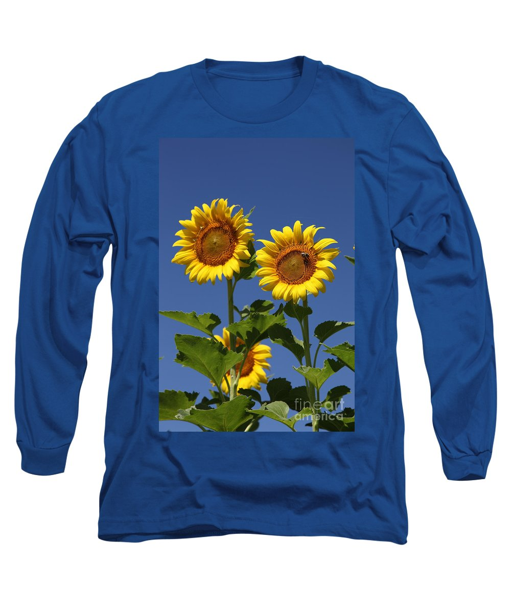 Sunflower Long Sleeve T-Shirt featuring the photograph Viewing The Past by Amanda Barcon